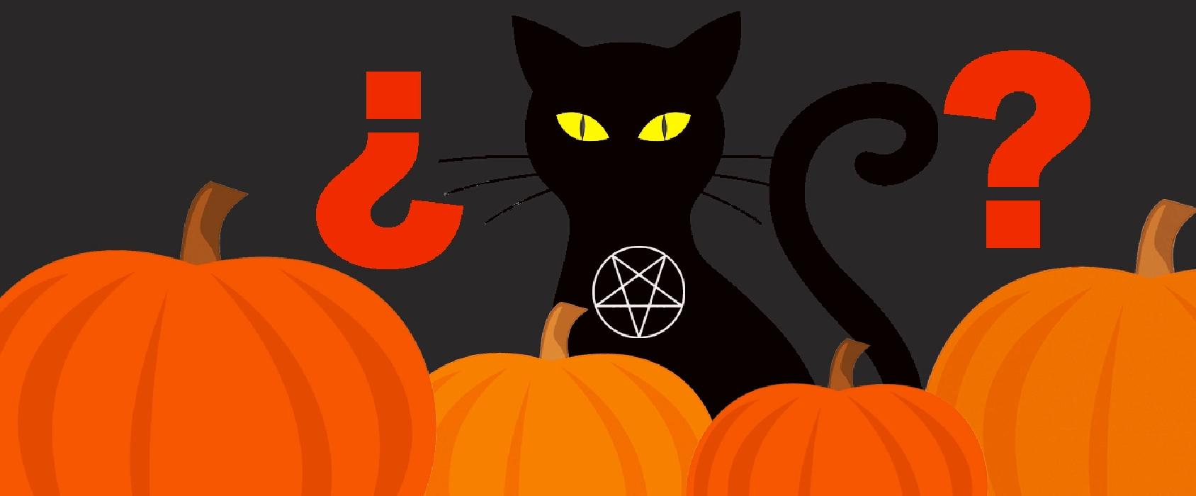 Qué sabemos sobre el mito de que los gatos negros y blancos son usados para  ritos satánicos en Halloween? - Maldita.es