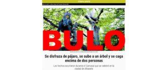 No, una persona no se disfrazó de pájaro, se subió a un árbol y defecó encima de dos personas en el Carnaval de Albacete: sale de una web satírica