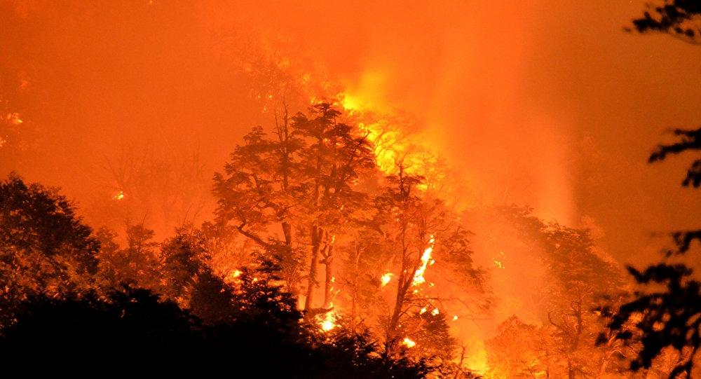 Resultado de imagen para fuego en el amazonas