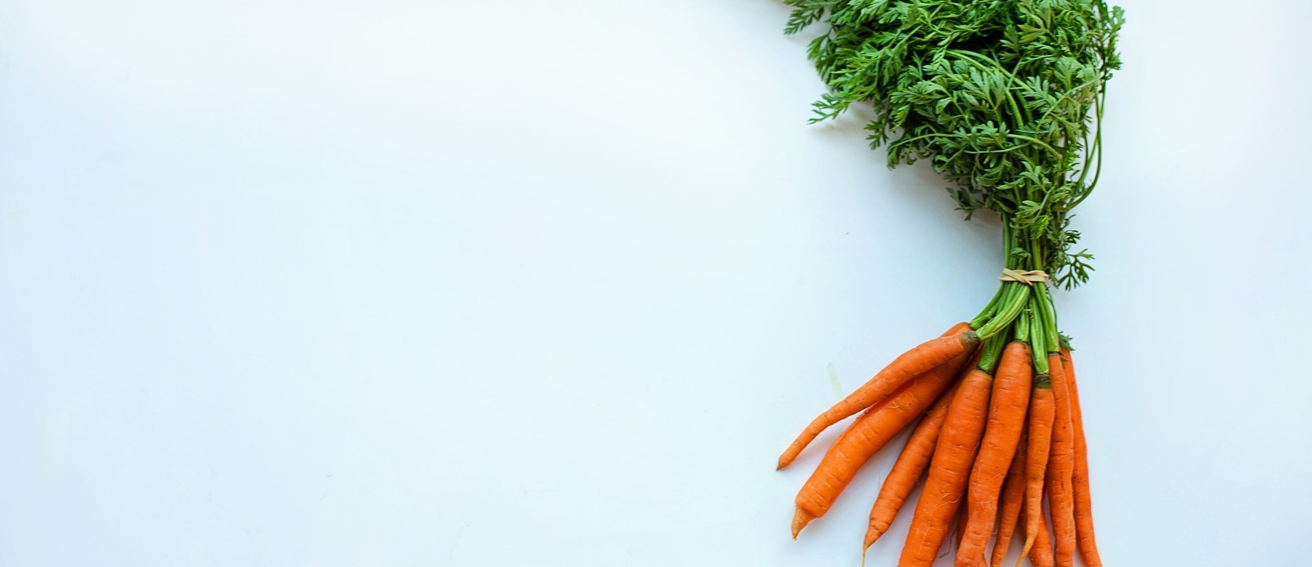 ¿Qué sabemos sobre la app Yuka y los criterios que utiliza para puntuar los alimentos?
